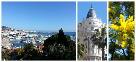 Photos de Cannes